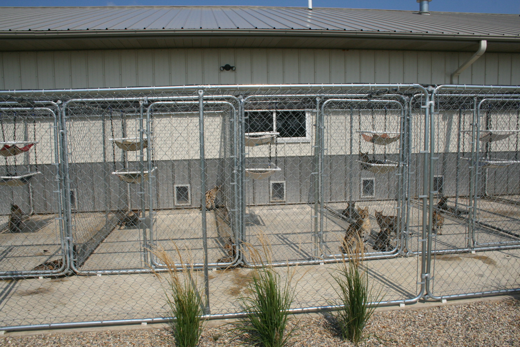 select exotics breeding facility